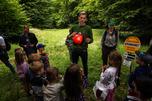 Waldschule_2.jpg © red