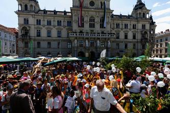 Waldfest_2017-Bild5.jpg © Maierhofer