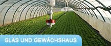 glas_gewaechshaus © Archiv
