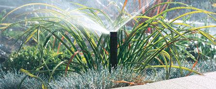 Bewaesserungssysteme Gartenbewaesserung © Archiv