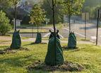 Treegator® Mobile Tröpfchenbewässerung für Bäume © Archiv